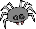 spider-sm